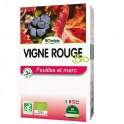 Vigne rouge - Biotechnie