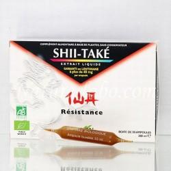 SHII TAKE (champignon chinois) - REDON