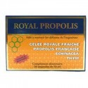 ROYAL PROPOLIS 2 btes fortifiant - NUTRITION CONCEPT