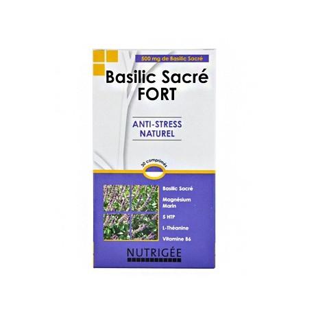 Basilic Sacré Fort - NUTRIGEE